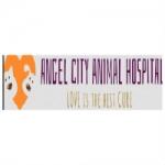 Angel City Animal Hospital
